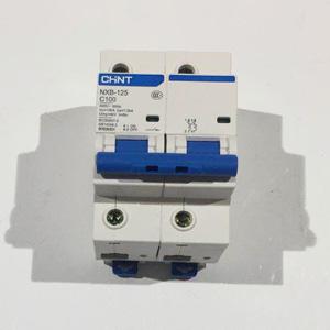 正泰 断路器 NXB-125 2P C100