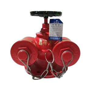 鑫祥龙 多用式水泵接合器 SQD100-1.6 24斤 球墨五铜