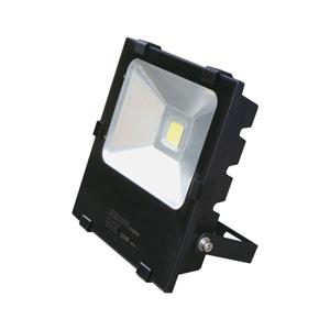联塑 投光灯 LS0203C-50W 绿光
