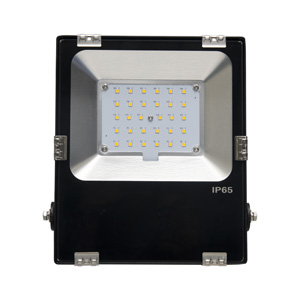 联塑 集成投光灯LS0202C-50W/冷白/AC220V