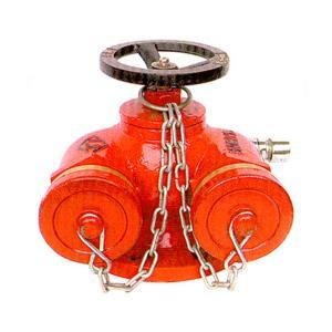 普通 水泵接合器 DN100