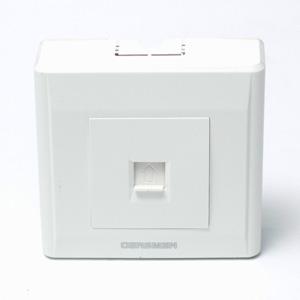 德國西蒙GERSMEN 明裝電腦插座 Q2