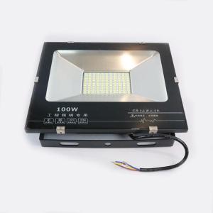 普通 投光灯 LED 100W 白色(贵州)