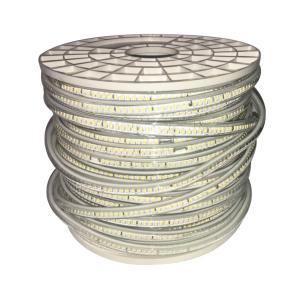 金美达 2835白富美0.2W单排 10mm板144D22R铜线 暖白 (透镜款)