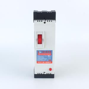 AA珠江 漏电断路器 DZ15LE-100型 290 100A
