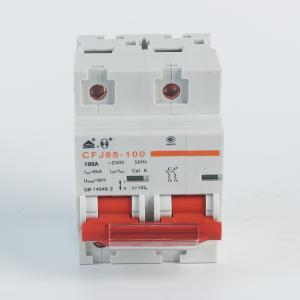 佳华小型断路器CFJ65-1002P100AC型
