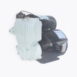 威尔乐 智能全自动冷热水自吸泵 YT60-400A 400W(英德)