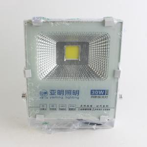 亚明 金刚116系列 投光灯 30W 正白