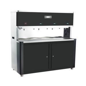爱普兰 热交换式加热系列 AP598R(RO型)