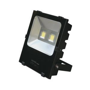 联塑 集成投光灯LS0203C-100W/3000-3500K/AC220V