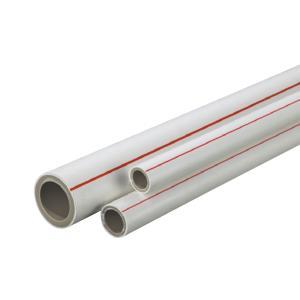 联塑 双色PP-R冷给水管S4(1.6MPa)内灰外白色 DN32 4M
