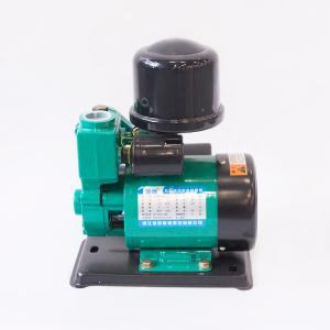 德莱斯顿 凌欧全自动冷热水自吸泵(韩进款) WZB-DR125A